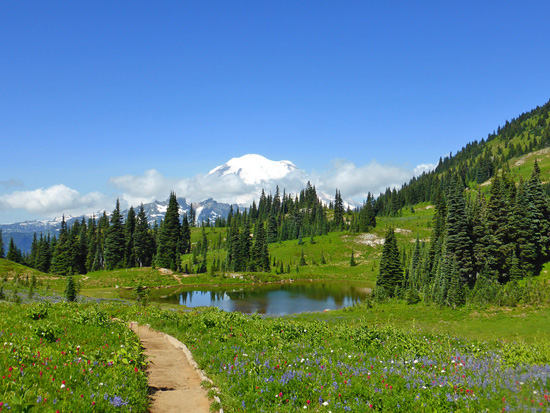 View of Mount Rainier on the Naches Peak Loop